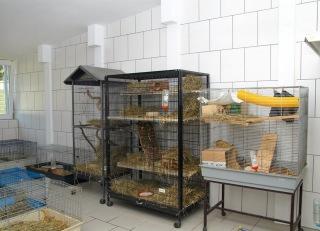 Fertigbau bürogebäude